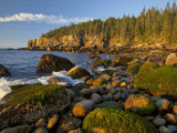 Buy Polished Rocks at Otter Cliffs, Acadia National Park, Maine, USA at AllPosters.com