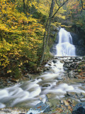 Buy Moss Glen Falls in Autumn, Granvillie, Vermont, USA at AllPosters.com