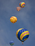 Colorful Hot Air Balloons Decorate the Morning Sky, Colorado Springs, Colorado, USA