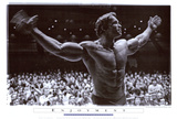Arnold Schwarzenegger Jaws 1975 Movie Cover Art Rocky - Movie Score Arms Up