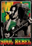 Bob Marley- Soul Rebel