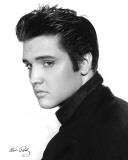 Elvis Presley - Portrait Mini Poster