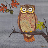 Awesome Owls II