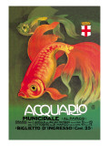 Buy Acquario at AllPosters.com