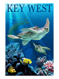 Buy Key West, Florida - Sea Turtles at AllPosters.com
