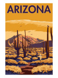 Arizona Desert Scene with Cactus
