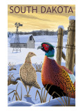 Pheasants - South Dakota