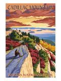 Acadia National Park, Maine - Cadillac Mountain Art Print
