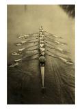 Rowing Crew Art Print