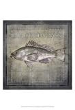 Buy Ocean Fish II at AllPosters.com