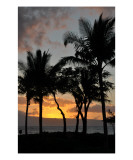Buy Sunset Silhouette in Maui at AllPosters.com