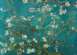 Buy Van Gogh - Almond Blossom at AllPosters.com