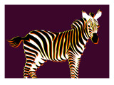 Zebra in Purple Horizontal