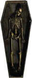 Skeleton Casket Stand Up