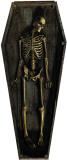 Skeleton Casket Cardboard Cutouts