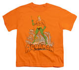 Youth: Aquaman - Aquaman Distressed