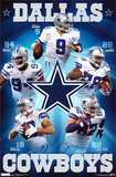 Cowboys - Team 2011