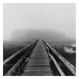 Misty Walk, Cape Cod Art Print