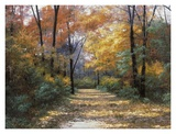 Buy Autumn Road at AllPosters.com