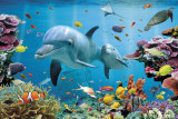 Buy Tropical Underwater-Ocean at AllPosters.com