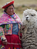 Peru, a Female with an Alpaca at Abra La Raya