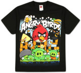 Youth: Angry Birds - Angriest Attack