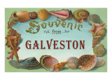 Souvenir from Galveston, Texas