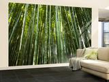 Bamboo Forest, Arashiyama-Sagano District