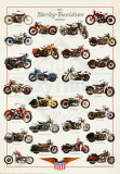 Harley Davidson Legend Poster