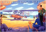 Palm Beach Aero Art Print