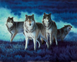 Wolf Group Art Print