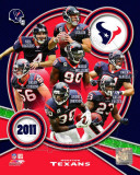 Houston Texans 2011 Team Composite