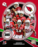 Arizona Cardinals 2011 Team Composite