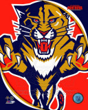 Florida Panthers 2011 Team Logo