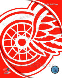Detroit Red Wings 2011 Team Logo