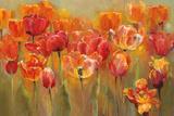 Tulips in the Midst III