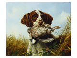A Pointer with a Quail Amongst Clover
