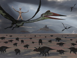 Reptoids Ride on the Backs of Quetzalcoatlus Using Telepathy Photographic Print