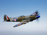 A Supermarine Spitfire MK-18 in Flight Photographic Print