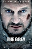 Buy The Grey from Allposters