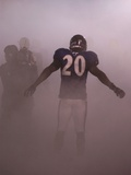 VIKINGS RAVENS FOOTBALL: BALTIMORE, MARYLAND - Ed Reed