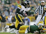 STEELERS PACKERS: GREEN BAY, WISCONSIN - Troy Polamalu