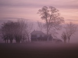 Fall Fog on Suffolk Virginia Farm