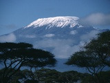 Kilimanjaro and Acacia Trees Photographic Print