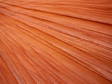 USA Utah South Coyote Buttes Sandstone rock close-up full frame