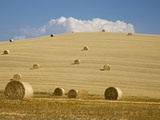 Italy, Tuscany, Bales of straw on corn fields