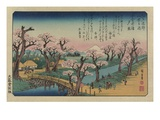 Evening Glow at Koganei Bridge Giclee Print