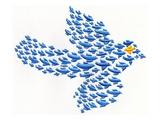 Nonconformist bird flying against the flock