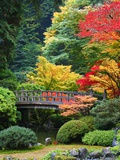 Buy Bridge in Japanese Garden at AllPosters.com