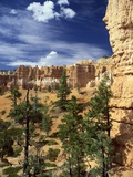 Hoodoos and Ponderosa Pines